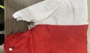Perempuan Mencuci Bendera Merah Putih Gunakan Gosok Toilet Ditangkap, Begini Tampangnya