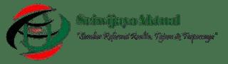 Sriwijaya Aktual | Sumber Informasi Realita Tajam Dan Terpercaya